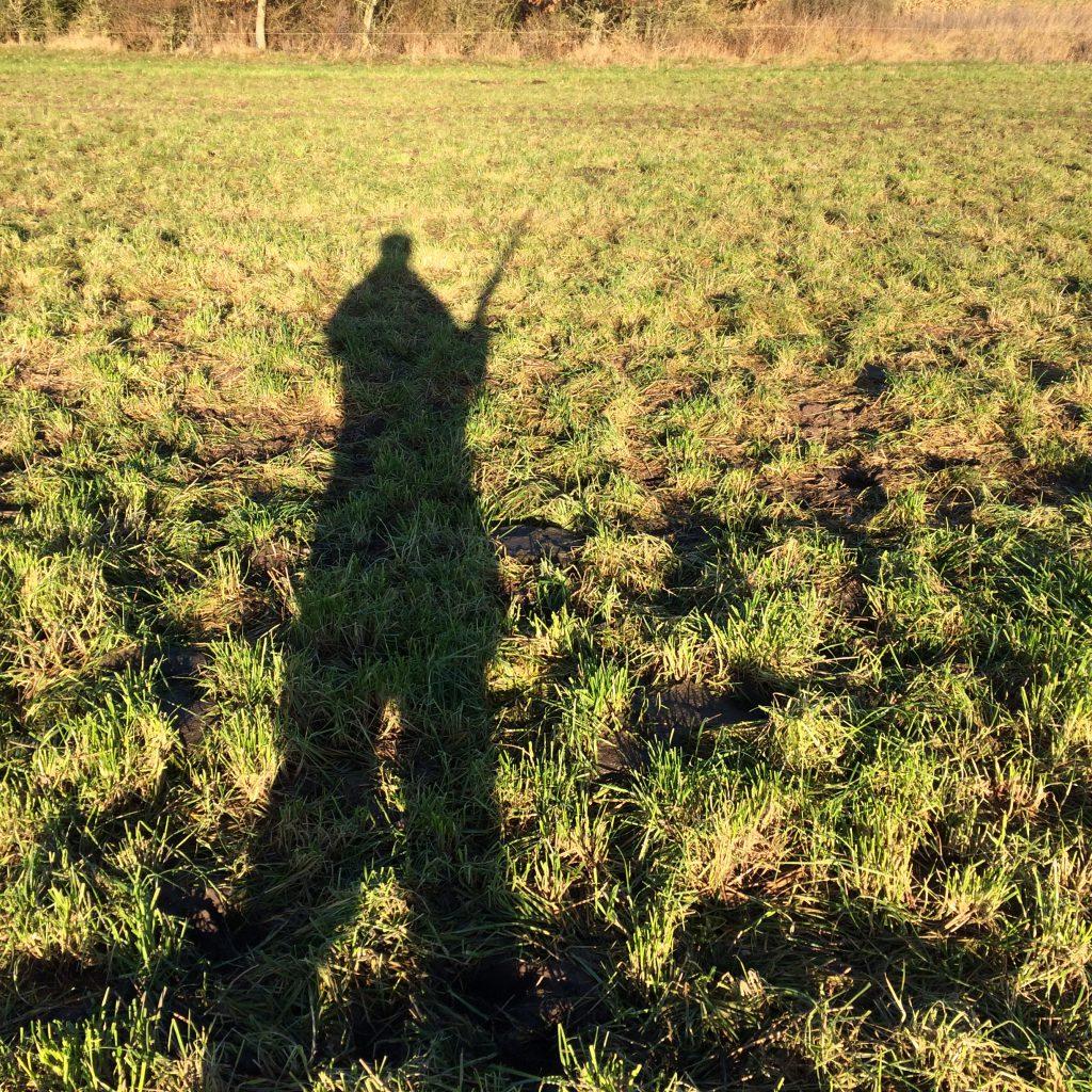 Midt på dagen i november er skyggerne lange